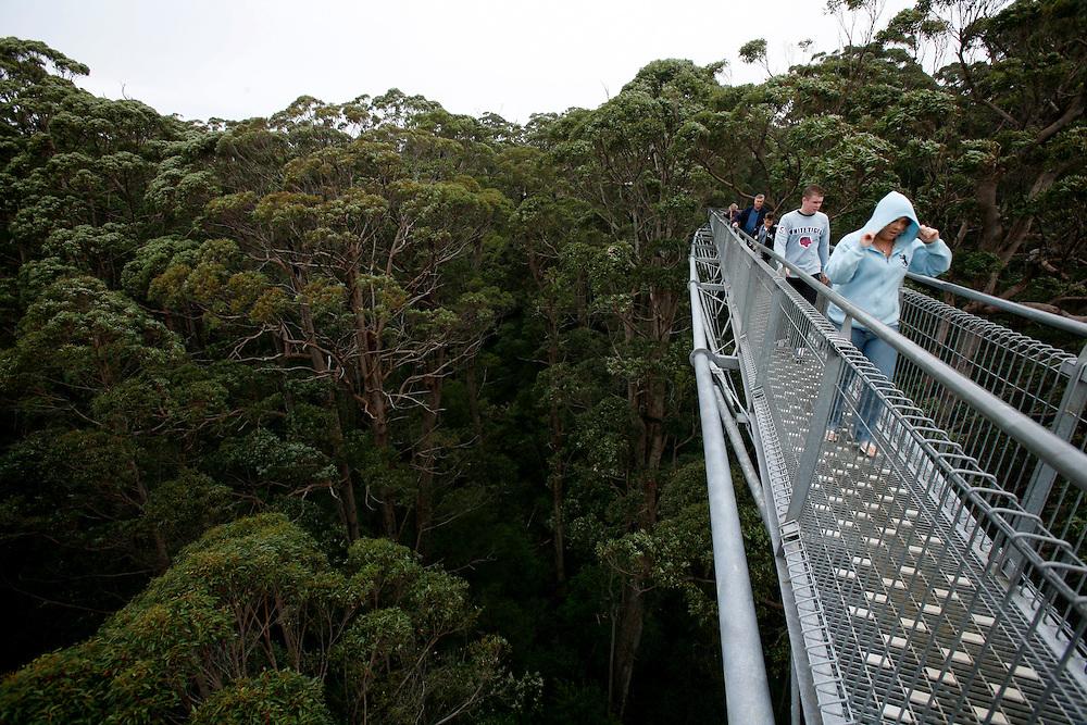 Tree Top Walk, Denmark,<br /> Andar ao n&iacute;vel de &aacute;rvores com dezenas de metros de altura n&atilde;o &eacute; coisa que aconte&ccedil;a todos os dias. E digo &ldquo;ao n&iacute;vel&rdquo; tanto no ch&atilde;o como l&aacute; em cima: o Tree Top Walk &eacute; uma passadeira met&aacute;lica com seiscentos metros de extens&atilde;o, que vai subindo subindo, at&eacute; estarmos junto &agrave; copa das gigantes &aacute;rvores tingle e karri.