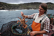 Simon Witham, lobster fisherman near Dinosaur Cove at Cape Otway, Victoria, Australia. MODEL RELEASED.