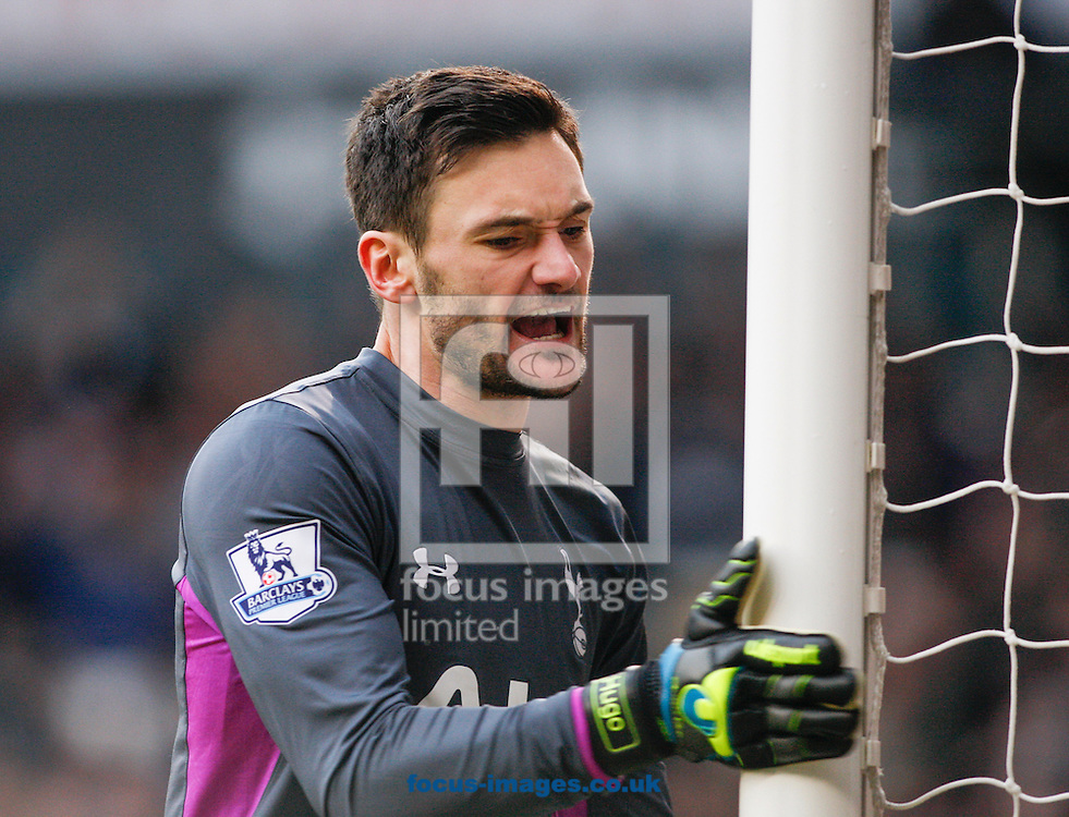 Hugo Lloris of Tottenham Hotspur reacts to their winning goal during the Barclays Premier League match at White Hart Lane, London<br /> Picture by Andrew Tobin/Focus Images Ltd +44 7710 761829<br /> 07/02/2015