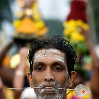 "Hindu devotee walks to the sacred Batu Caves temple during the Thaipusam festival in Kuala Lumpur, Malaysia. Hindu devotees celebrate Thaipusam festival in honour of the Lord Murugan (also known as Lord Subramaniam). Thousands of Hindu devotees carried the milk pots and ""kavadi"" (a gaily decorated wooden or metal frame) walk barefoot up the temple's 272 steps to undergo penance in fulfilling vows made to Lord Murugan for answering their prayers."