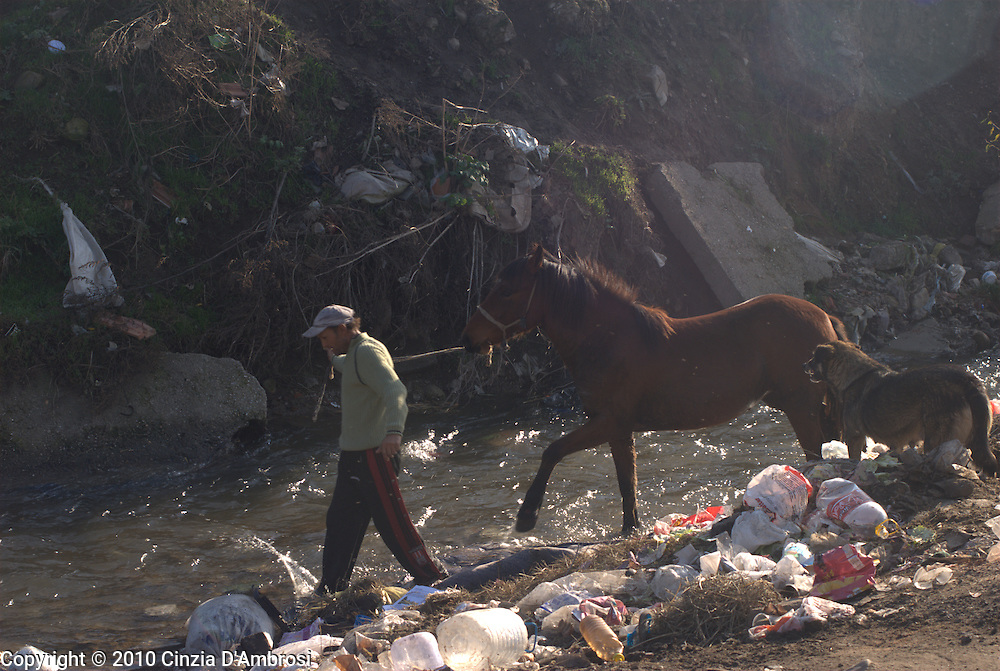 A Roma gypsy man walks with his horse in the river that runs across the Roma ghetto in Kjustendil, Bulgaria.