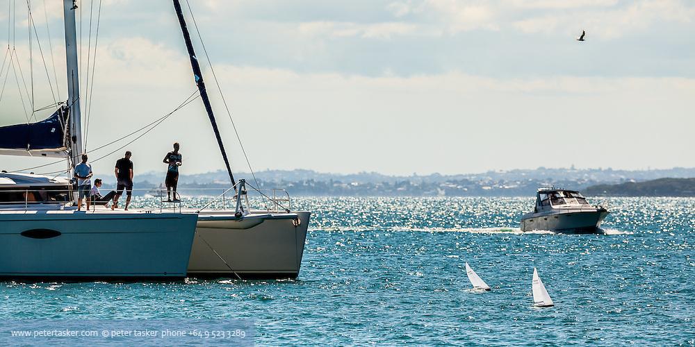 A group of guys aboard catamaran Liberte, racing their radio controlled yachts while anchored at Whalf Bay, (Waihaorangatahi Bay), Motuihe Island, Hauraki Gulf, Auckland.