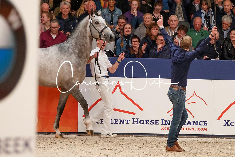 090, Kannan Jr<br /> KWPN Stallionshow - 's Hertogenbosch 2018<br /> © Hippo Foto - Dirk Caremans<br /> 01/02/2018