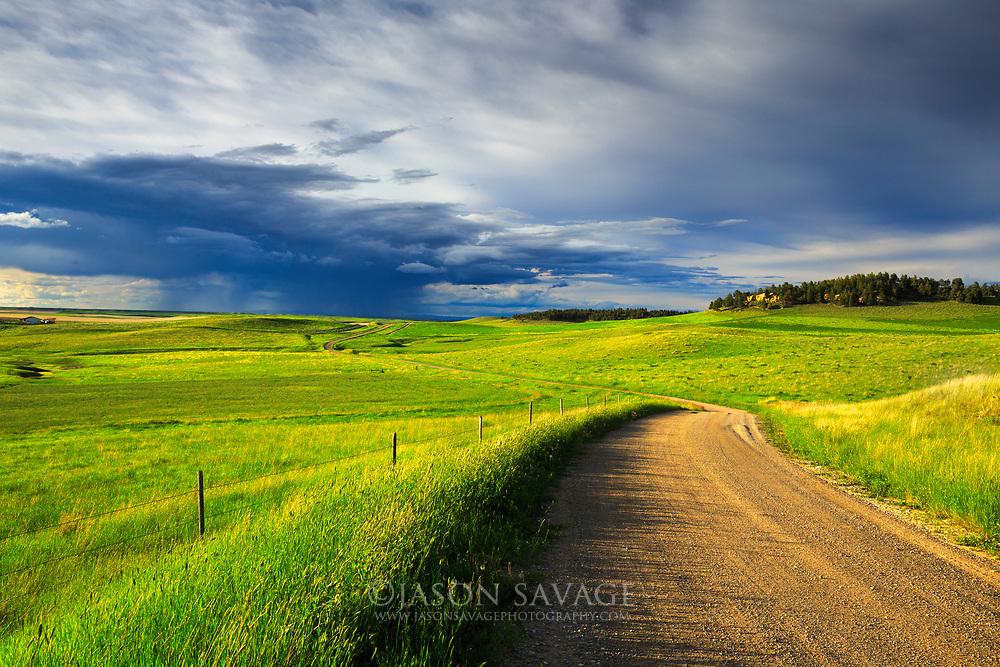 Central Montana near Beckman Wildlife Management Area