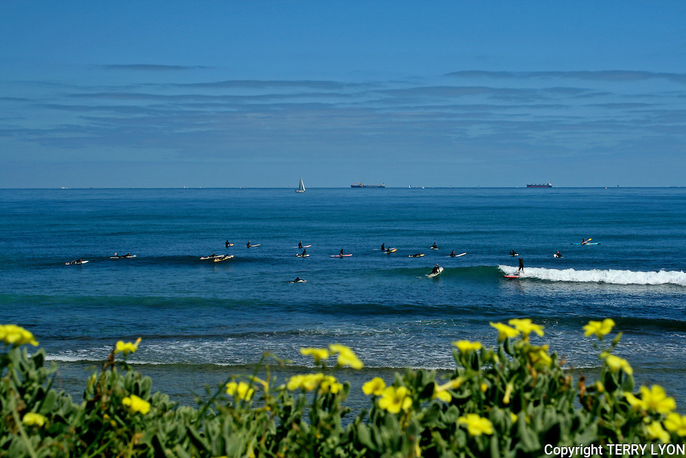 Isolators or Iso's is the name given to the surf break South of the Cottesloe Beach groyne, popular with long board and SUP surfers.