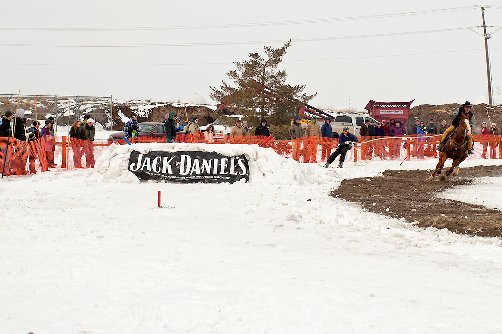 Ski Joring, Bozeman, Montana