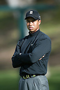 Professional golfer Tiger Woods looks on in a round two match at the Accenture Match Play Championship World Golf Championships held at the La Costa Resort and Spa on February 27, 2004 in Carlsbad, California. ©Paul Anthony Spinelli
