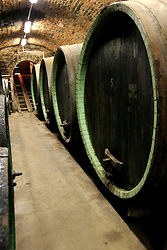 CZECH REPUBLIC MORAVIA DOLNI DUNAJOVICE 9SEP05 - Barrels and casks of wine are stored in cool underground cellars at the Mikrosvin Mikulov wineyard. Southern Moravia's centuries-old traditions in wine growing make it a well-established wine region...jre/Photo by Jiri Rezac..© Jiri Rezac 2005..Contact: +44 (0) 7050 110 417.Mobile:  +44 (0) 7801 337 683.Office:  +44 (0) 20 8968 9635..Email:   jiri@jirirezac.com.Web:     www.jirirezac.com..© All images Jiri Rezac 2005 - All rights reserved.