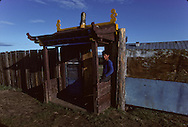Mongolia. Pontsogtchoidlin, monastery  in a house Ikh Tamir   /Monastere maison Temple de Pontsogtchoidlin Kree, Mongolie, sum de IK TAMIR. /R87/78    L920726a  /  P0002598