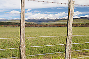 View through fence of rural land across to the Tararua range