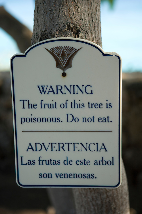 Warning sign on poisonous tree, Curacao