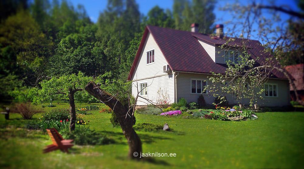 Rural garden with house. Grren, grass, homestead, building with backyard in Estonia.