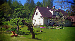 Rural garden with house. Grren, grass, homestead, building with backyard in Estonia.