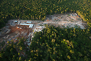 Low Impact Logging<br /> Rainforest<br /> Iwokrama Reserve<br /> GUYANA<br /> South America