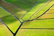 Nederland, Noord-Holland, Gemeente Ouder-Amstel, 14-06-2012; Polder De Ronde Hoep, een van de grootste onbebouwde veenweidegebieden van de Randstad met karakteristiek stervormig kavelpatroon. Dit slotenpatroon van gerende verkaveling is ontstaan in de middeleeuwen ten tijde van de ontginning van het laagveen  (er is ontgonnen vanuit en loodrecht op de omringende riviertjes Amstel, Bullewijk, Waver). .Polder Round Hoep, one of the largest undeveloped pasture area's in the Randstad with characteristic star-shaped pattern. This pattern is the result of the extraction during the Middle Ages..luchtfoto (toeslag), aerial photo (additional fee required);.copyright foto/photo Siebe Swart.