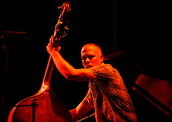 Avishai Cohen, 2011<br />