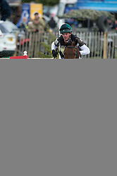 Newsam Jim (IRL) - Magennis<br /> Cross Country - CCI4* <br /> Mitsubishi Motors Badminton Horse Trials 2014 <br /> © Hippo Foto - Jon Stroud