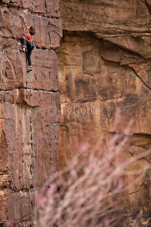 "Tracy Martin climbing the trad route ""Spring Break"" 11d in Icebox Canyon, Red Rocks."