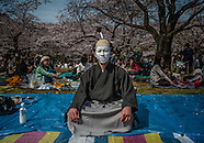 Japan's Sakura Party: When Japan Let's Its Hair Down