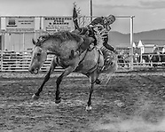 Townsend NRA and In-County Rodeo July 23-26, 2015