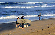 Couple Walking Along the Beach With Their Dog and Long Board Surf Board