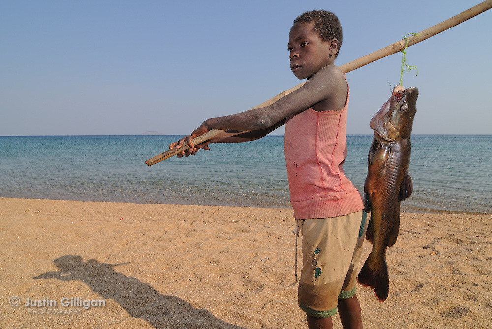Young fisher with Kampango for sale at Likoma Island, Lake Malawi, Malawi.