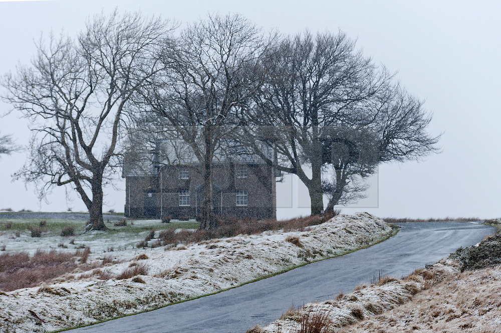 © Licensed to London News Pictures. 12/01/2017. Builth Wells, Powys, Wales, UK. The landscape becomes wintry as snow starts to fall on the high moorland of the Mynydd Epynt range near Builth Wells in Powys, Mid Wales, UK. Photo credit: Graham M. Lawrence/LNP