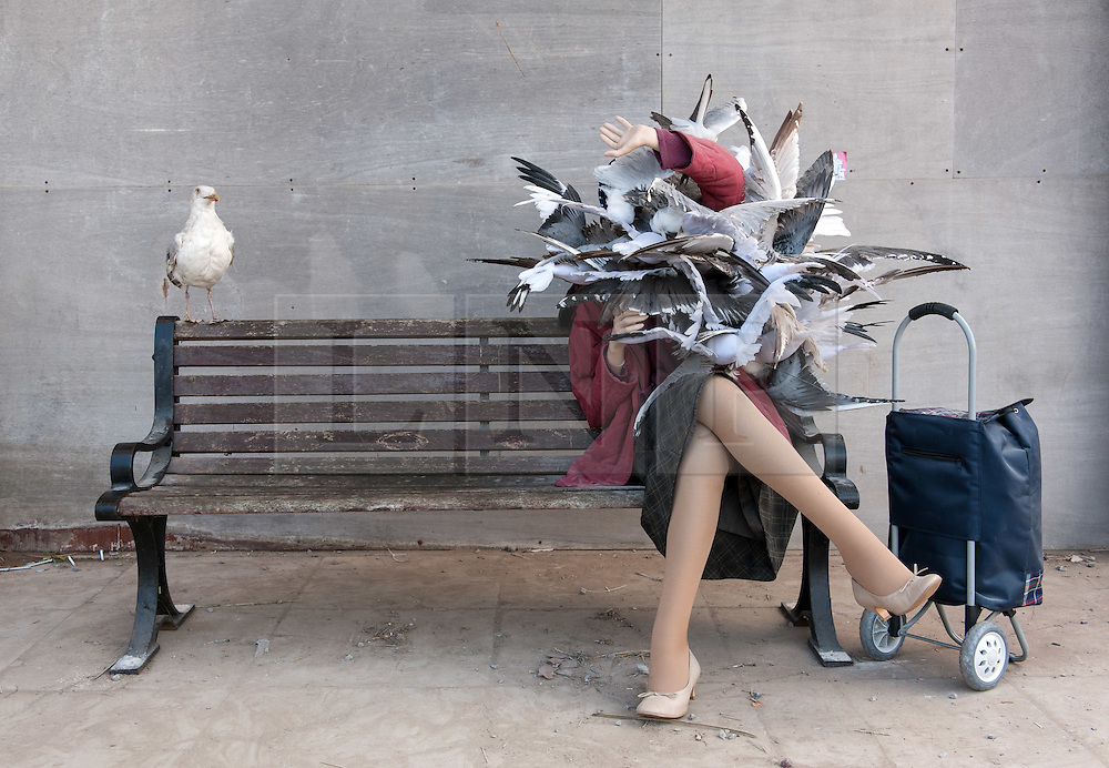 © Licensed to London News Pictures. 22/08/2015. Weston-super-Mare, North Somerset, UK.  A woman mannequin being attacked by seagulls on the first main day of BANKSY's Dismaland show at the old Tropicana on Weston seafront, when the event is open to the general public. Photo credit : Simon Chapman/LNP