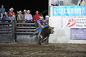 Bulls Elko Fri 17