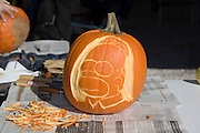 Missouri MO USA, Carving pumpkins for Halloween, Homer Simpson, at the apple butter festival Kimmswick October 2006