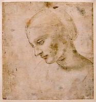 France, Paris, Musée du Louvre, Leonard de Vinci, Tête de femme // France, Paris, Louvre Museum, Leonardo da Vinci, Woman's head