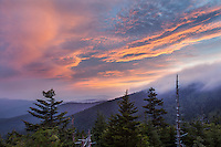 Backlit clouds roll over the high ridge on a summer night at Clingman's Dome, Tn.