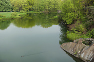 Turtle Pond in Central Park.