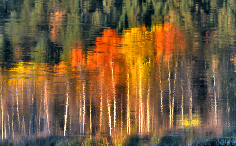 Fall colors reflect in the Williamson River in southern Oregon. ©Ric Ergenbright
