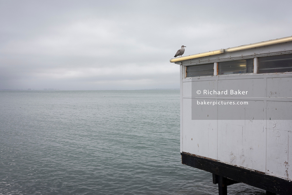 A seascape of a seafront business hut and resting gull on the Western Esplanade at Southend.