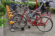Row of parked bicycles in central Tokyo, a popular form of transport in Japan