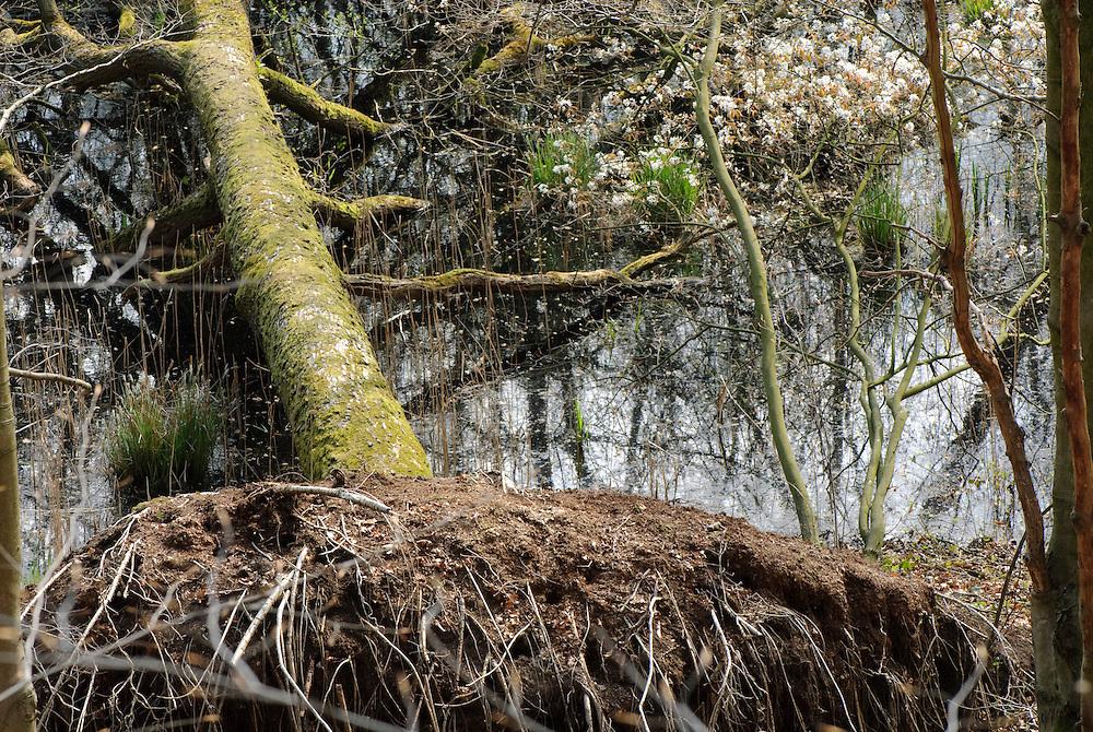 St jansberg, Mookerheide natuurmonumenten