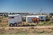 Horses near a fracking industry site in the San Juan Basin in New Mexcio