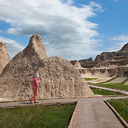 Badlands National Park in southwestern South Dakota protects 242,756 acres of sharply eroded buttes, pinnacles, and spires. The park protects an expanse of mixed-grass prairie where bison, bighorn sheep, ( Ovis canadensis ) and prairie. MR Model Release Photography by Jose More