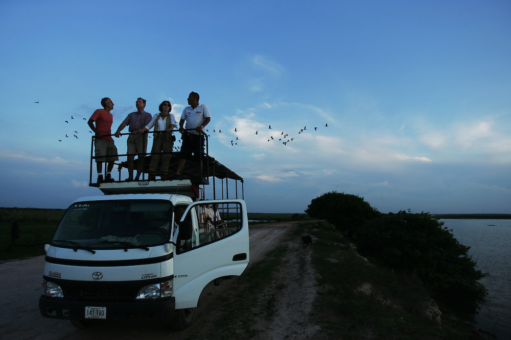 "A group of French  tourists watch birds at sunset during a visit to Los Llanos in Venezuela. Los LLanos are the grasslands in western Venezuela famous for the ""llanera"" culture of cowboys and music.  Many working ""Hatos"" , or cattle ranches, dot the landscape of grasslands and river systems, offering tourists a chance to see the beautiful landscape and various wildlife.  Tourists go out on land and water excursions where they get a chance to see see caiman, orinoco crocodile, anaconda, piranha, numerous bird species and capybara, the world's largest rodent."