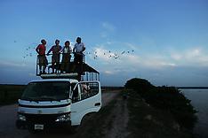 Traveling Los Llanos