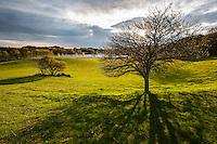 Bølgende kulturlandskap ved Litle Stokkavatnet i Stavanger kommune. Kveldsstund tidlig på våren.