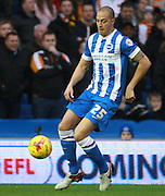 Brighton striker Bobby Zamora  during the Sky Bet Championship match between Brighton and Hove Albion and Wolverhampton Wanderers at the American Express Community Stadium, Brighton and Hove, England on 1 January 2016. Photo by Bennett Dean.