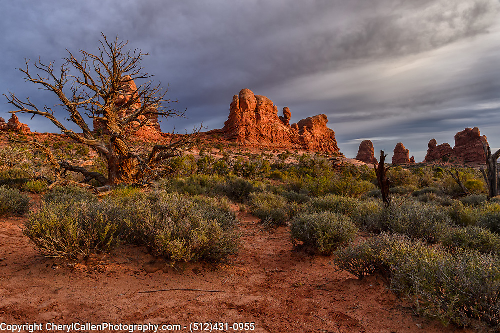 Stormy skies in Arches National Park