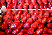 A stack of ripe, fresh red strawberries