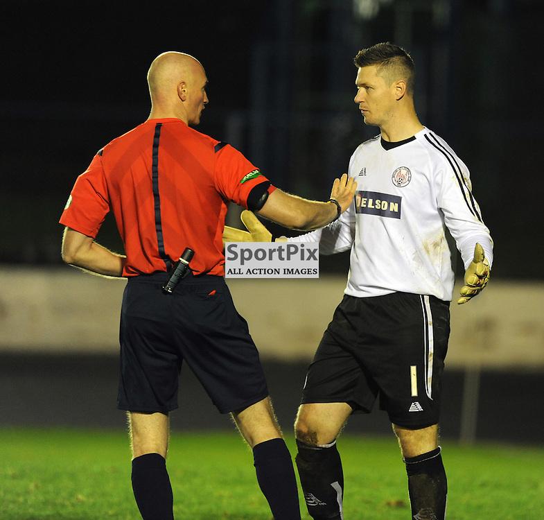 Cowdenbeath v Brechin Ladbrokes League 1 Central Park 14 November 2015<br /> <br /> Ref Alan Newlands and Graeme Smith<br /> <br /> (c) David Wardle | StockPix.eu