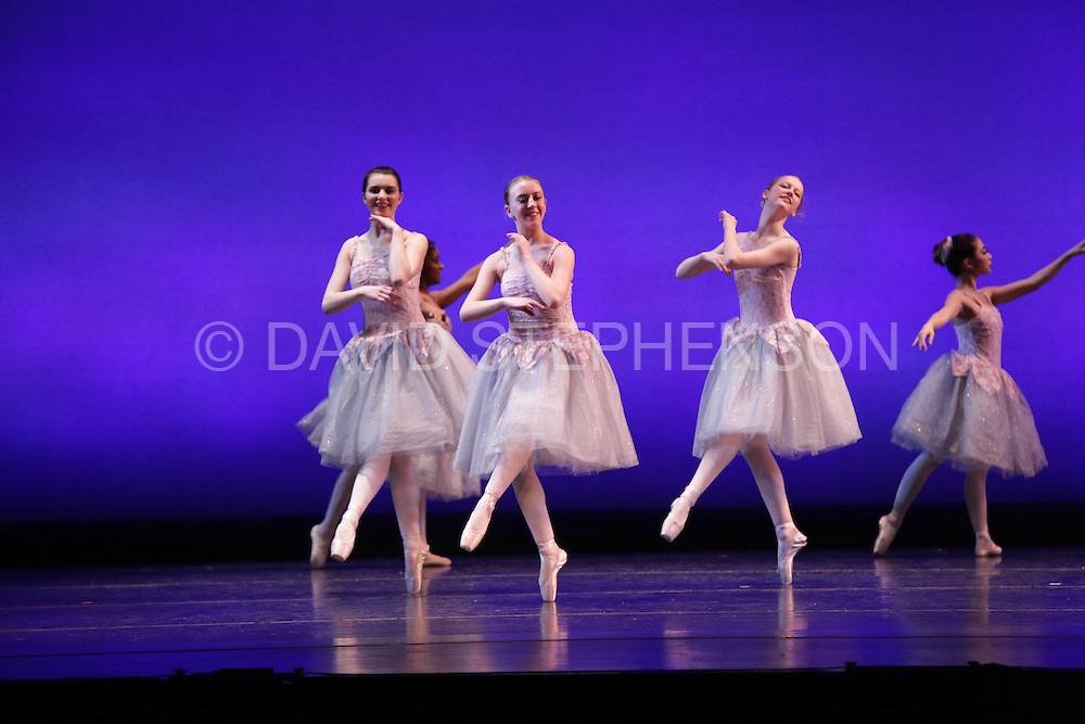 Dance Scapa 2015 in Lexington, Ky., on Jan. 19, 2015.