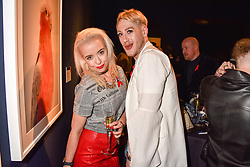 Lewis-Duncan Weedon and Lemon at the Terence Higgins Trust Auction 2017 at Christie's, 8 King Street, St.James's, London England. 11 April 2017.