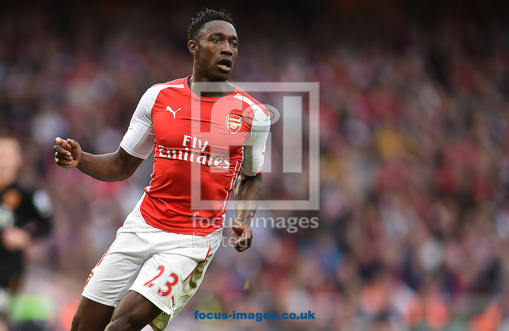 Danny Welbeck of Arsenal during the Barclays Premier League match against Hull City at the Emirates Stadium, London<br /> Picture by Andrew Timms/Focus Images Ltd +44 7917 236526<br /> 18/10/2014