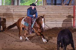 May 21, 2017 - Minshall Farm Cutting 4, held at Minshall Farms, Hillsburgh Ontario. The event was put on by the Ontario Cutting Horse Association. Riding in the 35,000 Non-Pro Class is David Hamilton on Cat Powered owned by the rider.